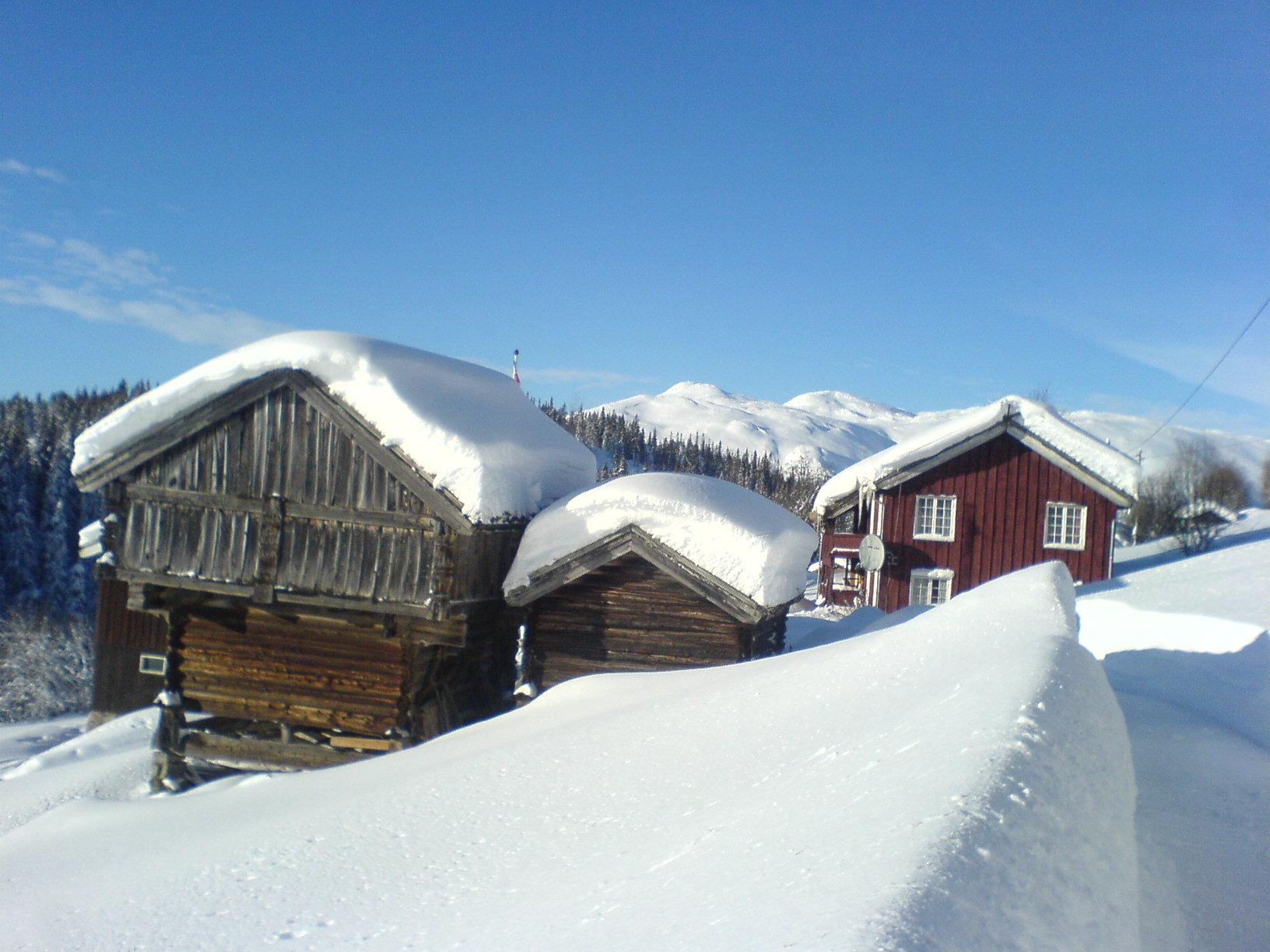 Hytteutleie på Djuvland Fjellgard i Rauland